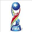 2015年U17世界杯足球赛标志公布