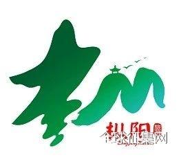 枞阳县旅游宣传口号、形象标识(LOGO)征集揭晓