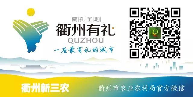 """青年旅社logo_你的入围了吗?""""衢州有礼""""诗画风光带征名及LOGO征集入围名单 ..."""