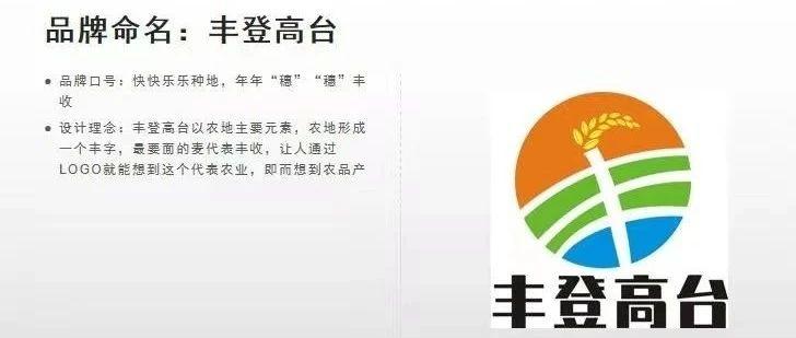 高台县农产品区域公共品牌LOGO征集初审会公示结果